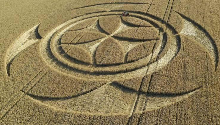 circulo de los cultivos senal templaria - Aparece un gigantesco círculo de los cultivos con una señal templaria en un campo de Francia