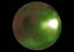 pulsos brillantes marte 104x74 - LA NASA descubre misteriosos pulsos brillantes en la atmósfera de Marte