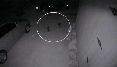 criaturas humanoides texas 384x220 - Cámara de seguridad graba pequeñas criaturas humanoides en una casa de Texas