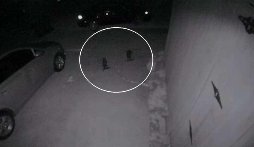 criaturas humanoides texas 850x491 - Cámara de seguridad graba pequeñas criaturas humanoides en una casa de Texas