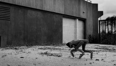 robot boston dynamics canada 384x220 - 'Black Mirror' en la vida real: un perro robot de Boston Dynamics patrulla las calles de Canadá