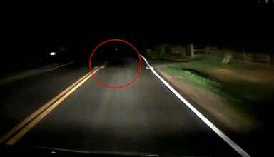 sombra espectral criatura 384x220 - Graban la sombra espectral de una criatura en una carretera de EE.UU.