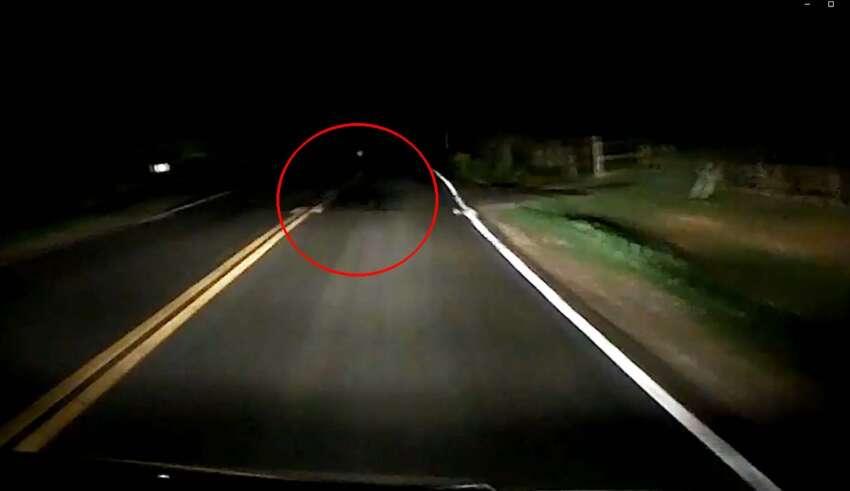 sombra espectral criatura 850x491 - Graban la sombra espectral de una criatura en una carretera de EE.UU.
