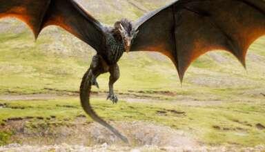 dragones existieron humanos 384x220 - Reconocido profesor de universidad asegura que los dragones existieron y cohabitaron con los humanos