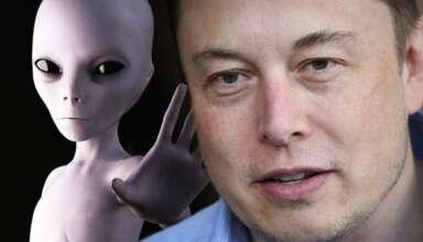 elon musk extraterrestre 384x220 - Elon Musk confirma que es un extraterrestre
