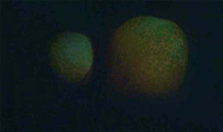 gigantescos planetas dubai - Decenas de personas ven dos gigantescos y misteriosos planetas gemelos en el cielo de Dubái