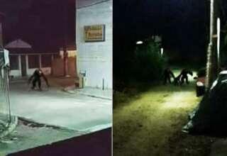 brasil criaturas 320x220 - Pánico en Brasil por unas imágenes reales que muestran aterradoras criaturas deambulando por las calles durante la noche