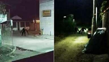 brasil criaturas 384x220 - Pánico en Brasil por unas imágenes reales que muestran aterradoras criaturas deambulando por las calles durante la noche