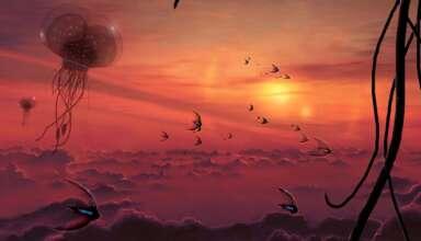 marte lleno vida extraterrestre 384x220 - Científica del SETI asegura que Marte está lleno de vida extraterrestre