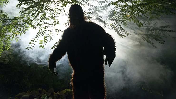 oklahoma cazar bigfoot - Oklahoma ofrece una recompensa de más de 2 millones de dólares a quien logre cazar un Bigfoot