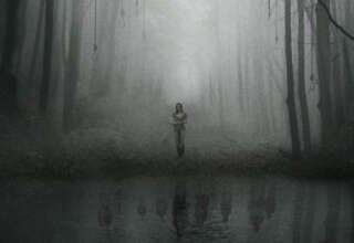 aokigahara bosque suicidios 320x220 - Encuentros paranormales en Aokigahara, el bosque de los suicidios de Japón