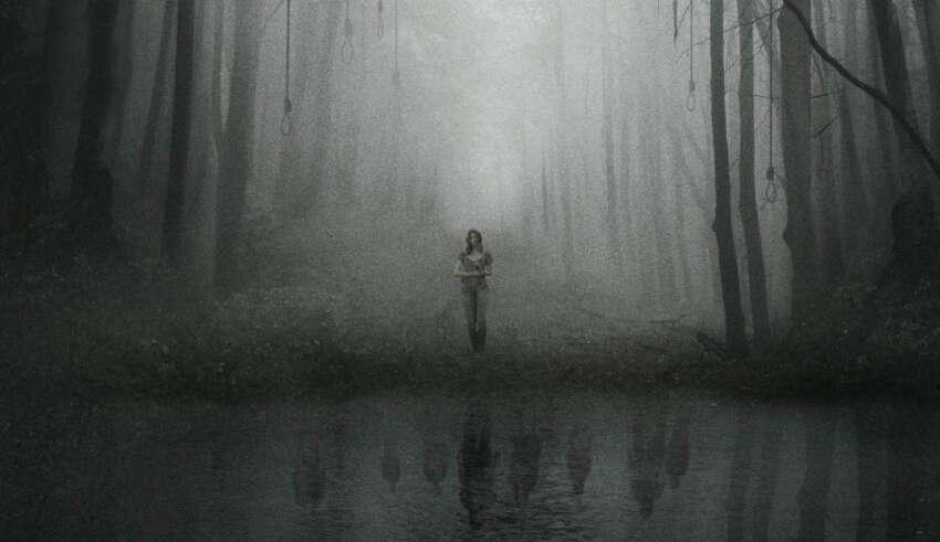 aokigahara bosque suicidios 850x491 - Encuentros paranormales en Aokigahara, el bosque de los suicidios de Japón