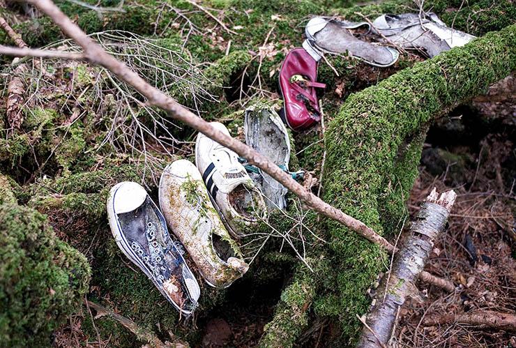 bosque suicidios - Encuentros paranormales en Aokigahara, el bosque de los suicidios de Japón