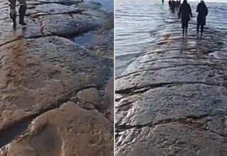 camino piedra gigante 320x220 - Un misterioso camino de piedra gigante surge debajo del Océano Pacífico