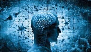 capacidad regenerar partes cuerpo mente 384x220 - Un estudio científico demuestra que los humanos tienen la capacidad de regenerar partes del cuerpo con la mente