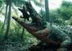 enorme cocodrilo africa 104x74 - Un enorme cocodrilo que se ha comido a 300 personas anda suelto en África