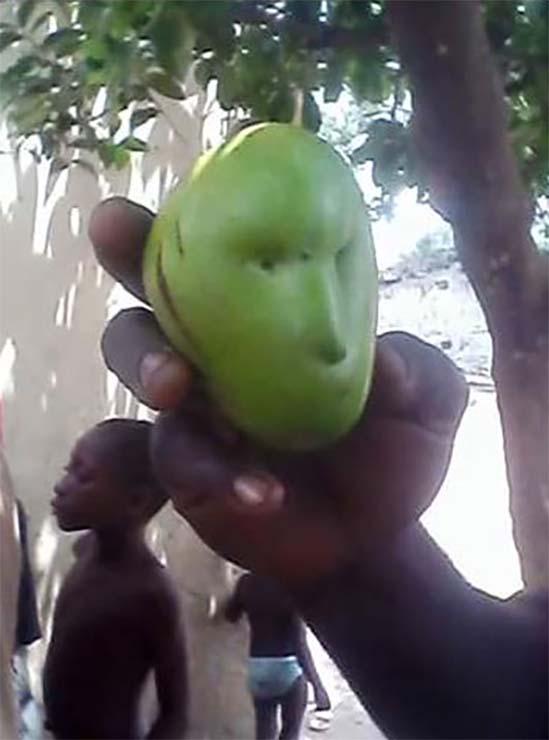 mango con rostro humano - Pánico en Kenia por la aparición de un mango con rostro humano en un árbol