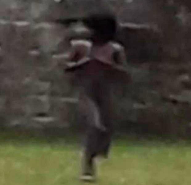castillo historico gales - Fotografían una aterradora figura fantasmal en un castillo histórico de Gales